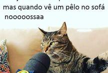 humor *-*