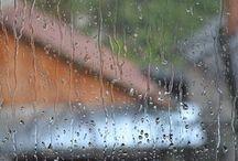 remedios anti humedad