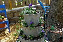 hage og planting