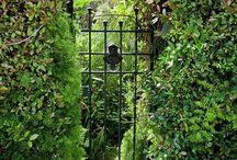 Garden ideas / by Amrita Datta