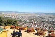 Kahramanmaraş Cafe & Restoran Firmaları / Kahramanmaraş Cafe & Restoran Firmaları Hakkında Detaylı Rehber