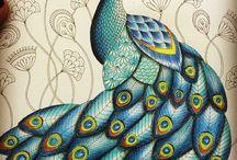 mandala desenho colorido