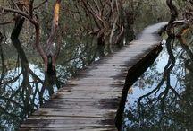 Brücken u Treppen
