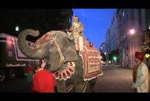 South Asian Wedding Videos