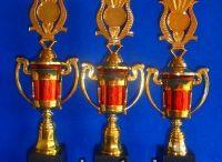 Harga Trophy Plastik / Jual Trophy Piala Penghargaan, Trophy Piala Kristal, Piala Unik, Piala Boneka, Piala Plakat, Sparepart Trophy Piala Plastik Harga Murah