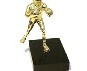 Boxing Awards