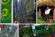 green-living roofs and walls