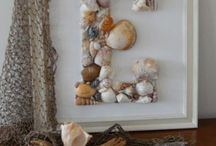 shells and beach theme / by Amber Gregg