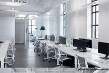 Office IgorRoca