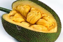 Jackfruit / Jackfruit