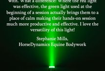Green Light Therapy / Green light is absorbed into the skin where it has a calming effect.  Anti-aging therapies often include green light therapy.  It helps to lighten hyper-pigmentation spots revealing a brighter complexion.  The calming effect also has anti-inflammatory properties that soothe the surface of the skin.  Green LED Therapy is used to treat dilated capillaries, sagging skin around the eyes, under eye circles, hyper-pigmentation and sun spots.
