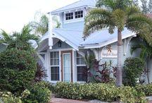 Florida Fun / Beautiful places to visit!