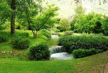 Giardino che passione! / Giardini, parchi, spazi verdi
