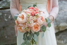 lillie's loves bouquets / by lillie's flowers for weddings and celebrations