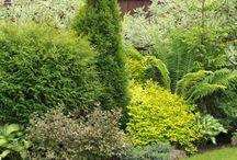 Haus - Garten - nio