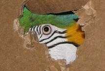 Macaw's / by BirdSupplies.com