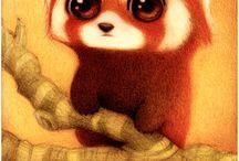 Dessin panda roux