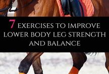 Horse Rider Fitness
