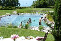Swim Ponds / Ponds specifically designed for swimming