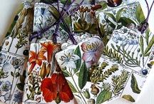 botanical / by Debbie Crawford