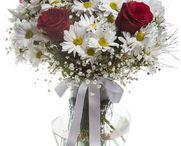 Yeni işe çiçek / Yeni işe çiçek göndermek için çiçek arıyorsanız, yeni işe çiçek kategori sayfamızı mutlaka ziyaret etmeniz lazım. http://www.cicekvitrini.com/cicekler/yeni-ise-cicek