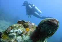 SCUBA diving / JUST DIVE