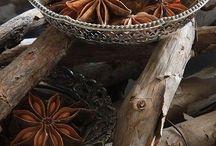 Comptoir des herbes, épices et condiments