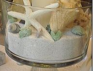 Shells decor