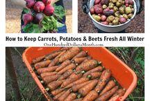 Gardening - Food Storage
