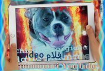 immauari YouTube