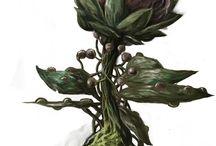 Flora RPG Ressource