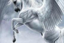 Horses and Pegasus