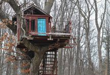 Tree Houses / by S. B.