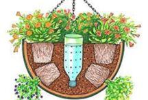 Balkon Pflanzen Bewässerung