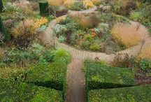 Land scape - Family garden