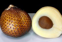 Improve concentration and memory fruit! Snake fruit (Salacca Zalacca, Salak)