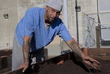 prison garden programs