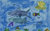 World Oceans Day—Everyday! / World Oceans Day is our planet's biggest celebration of the oceans—we encourage you to explore the beauty and wonder of the seas all year long! / by Monterey Bay Aquarium