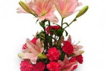 Lillie`s W/h Carnations