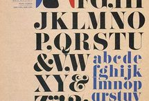 Typography / by Hazel Miller