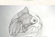 drow fish