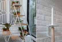 Plant Projects / Some day I vow to have a balcony and then I will fill it up with a bunch of plants  / by Kay Hawkins