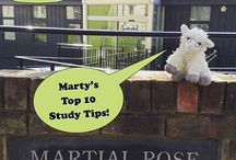 Marty's Top Revision Tips!