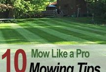 Lawn/Mowing tips