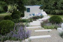 Mediterranean Gardening Blog