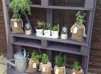 Herb ideas