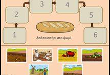Από το σιτάρι στο ψωμί / From wheat to bread