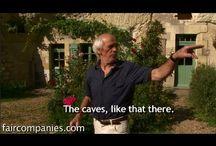 Favorite (architectural) Follies / by Wooden Wonders Hobbit Holes