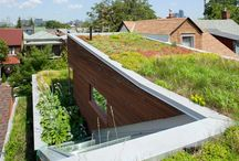 Green Roofs / Any type of planted roof