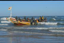 Sénégal / Rendez-vous en Terres Africaines